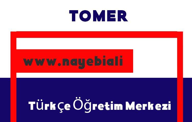 آزمون تعیین سطح زبان ترکی چگونه برگزار میشود؟